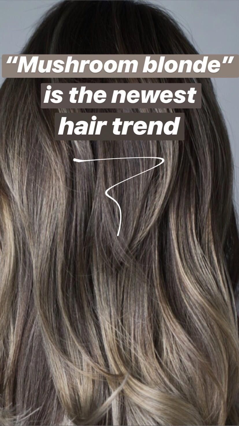Mushroom Blonde Is The Newest Low Maintenance Hair Color Trend For Blondes And Brunettes And It S A L Low Maintenance Hair Mushroom Hair Brunette Hair Color
