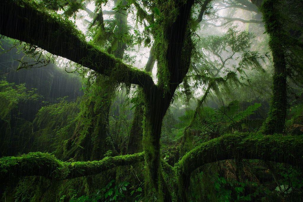 Mist Shower by Drew Hopper on 500px