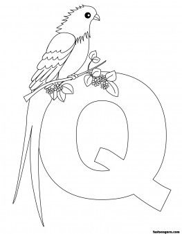 Printable Animal Alphabet worksheets Letter Q for Queen Whydah