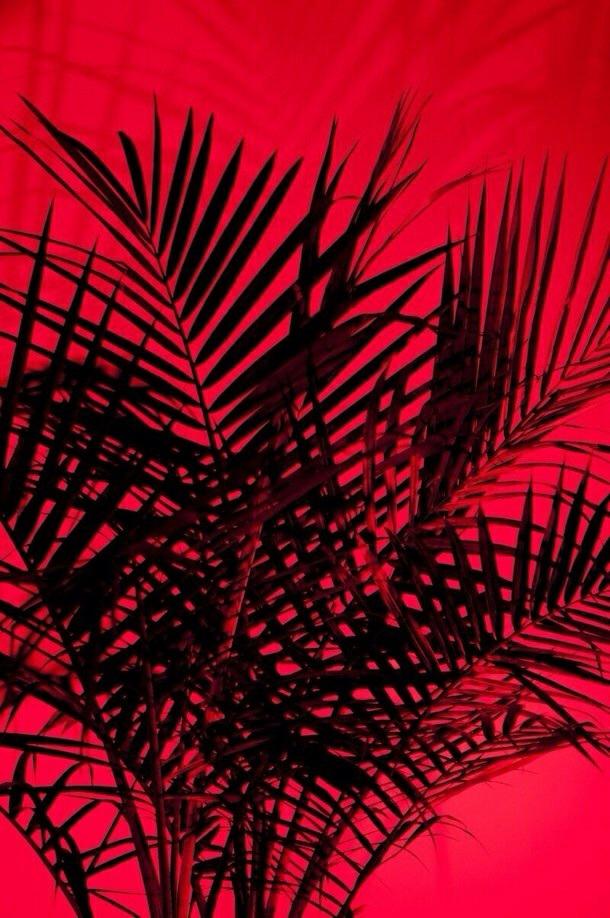 pinterest corauri Red aesthetic, Red wallpaper