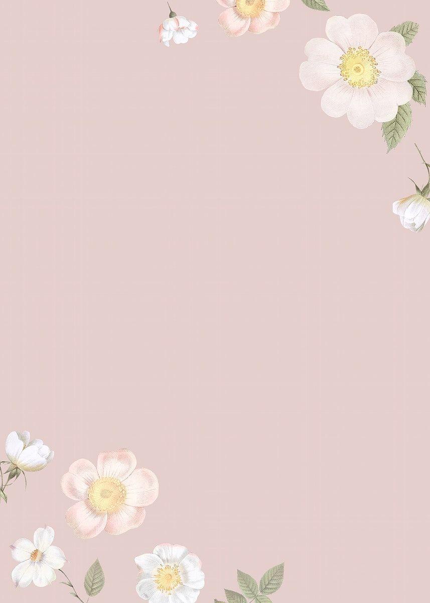 Download premium image of Blank elegant floral frame design by Donlaya about flower, pink, plant, pattern, and wedding 842624