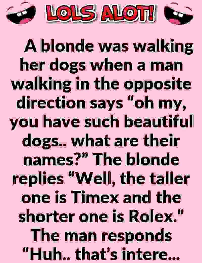 Hilarious Short Clean Joke Of The Day Blonde Walking Her Dogs Short Clean Jokes Clean Jokes Marriage Jokes