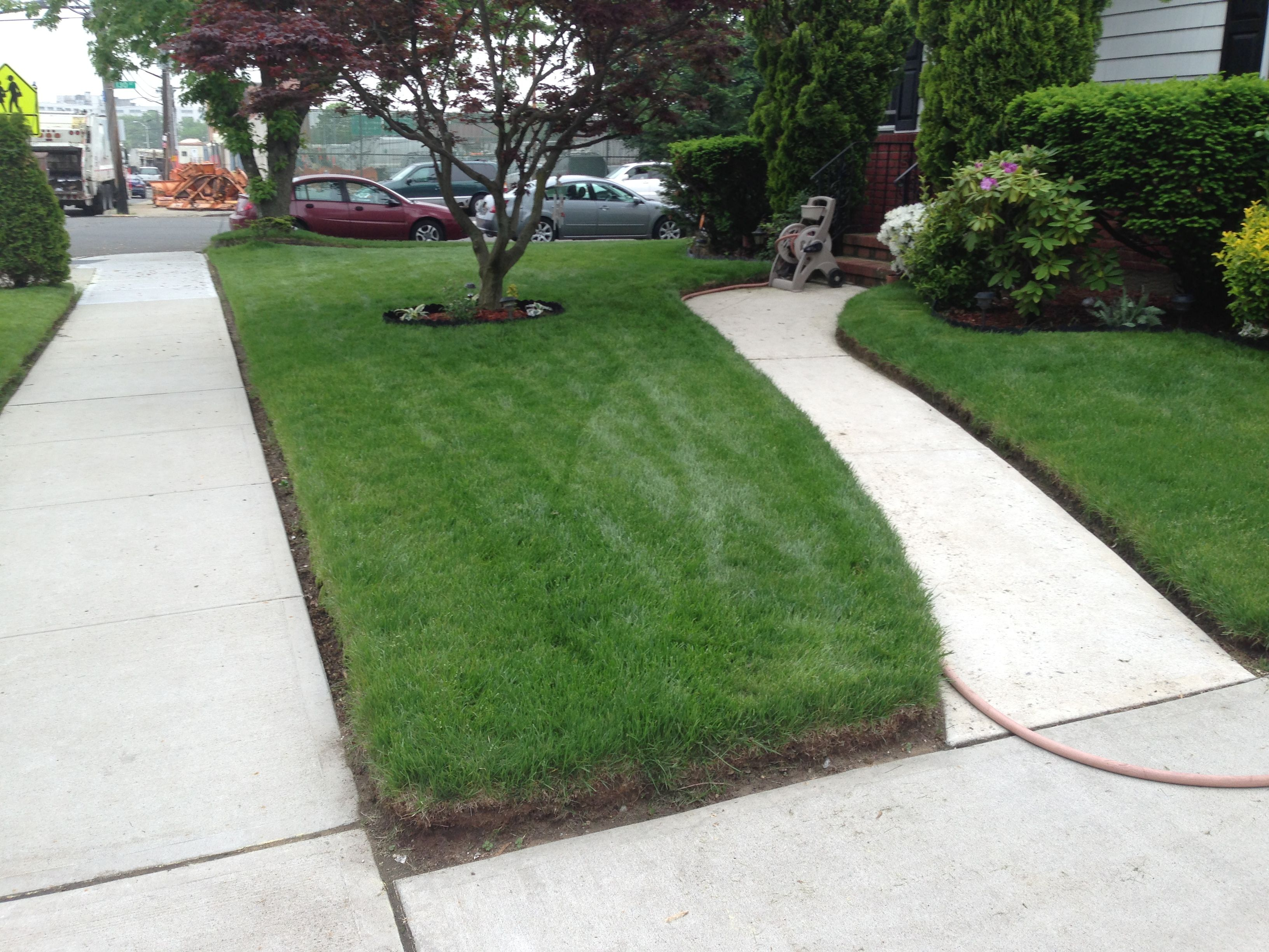 Want To Know How I Keep My Lawn Green