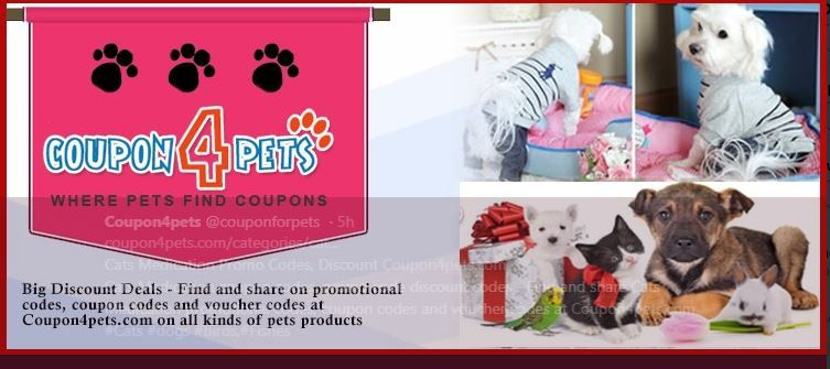 Pet Supermarket Discount Code >> Pin By Coupon4pets On Coupons4pets Pet Supermarket Where