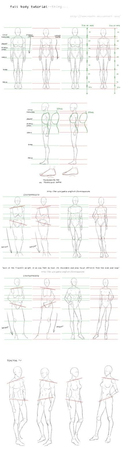 Pin By Tais Skinder On Drawings Pinterest Drawings Anatomy And
