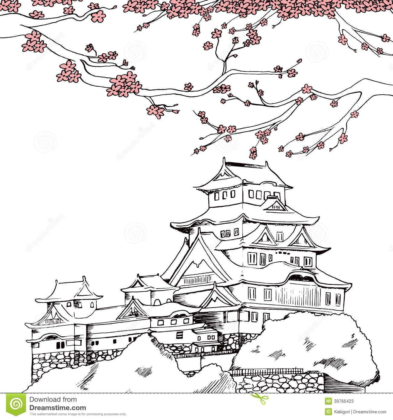 Japanese Sakura Drawing