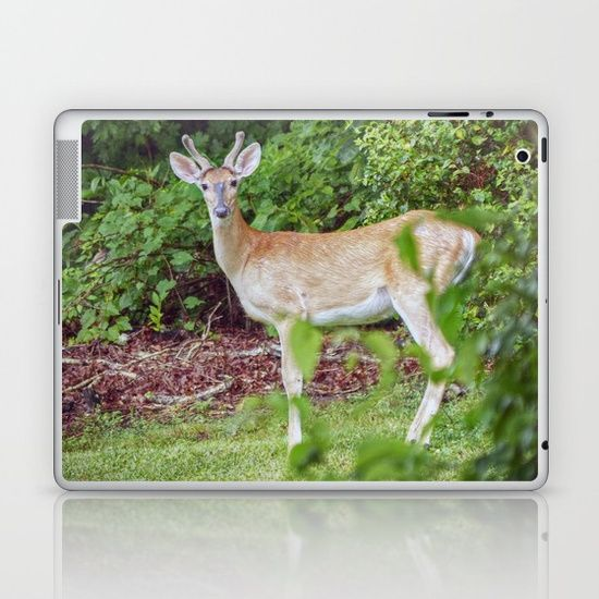 Skins Are Thin Easytoremove Vinyl Decals For Customizing Your - How to make laptop decals at home