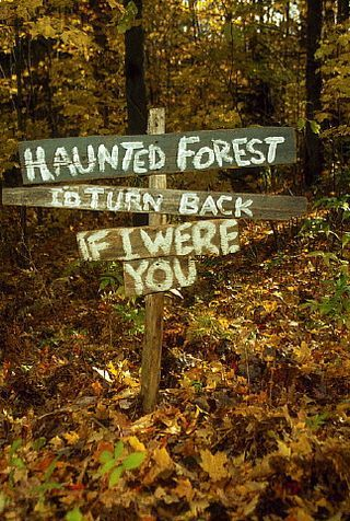 Google Image Result for   blogsdiscovery/a - haunted forest ideas for halloween