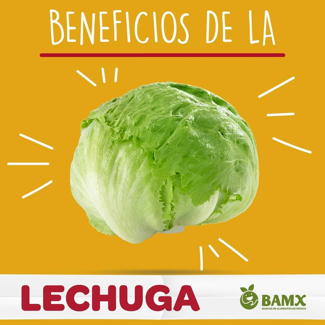 Para Tener Una Buena Alimentación Y Un Buen Uso De Nuestros Alimentos Primero Tenemos Que Estar Informados De Los Beneficios Que Nos Pr Vegetables Food Cabbage