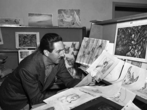 Walt Disney studying the Bambiu0027s storyboard Rediscovering Walt - photography storyboard