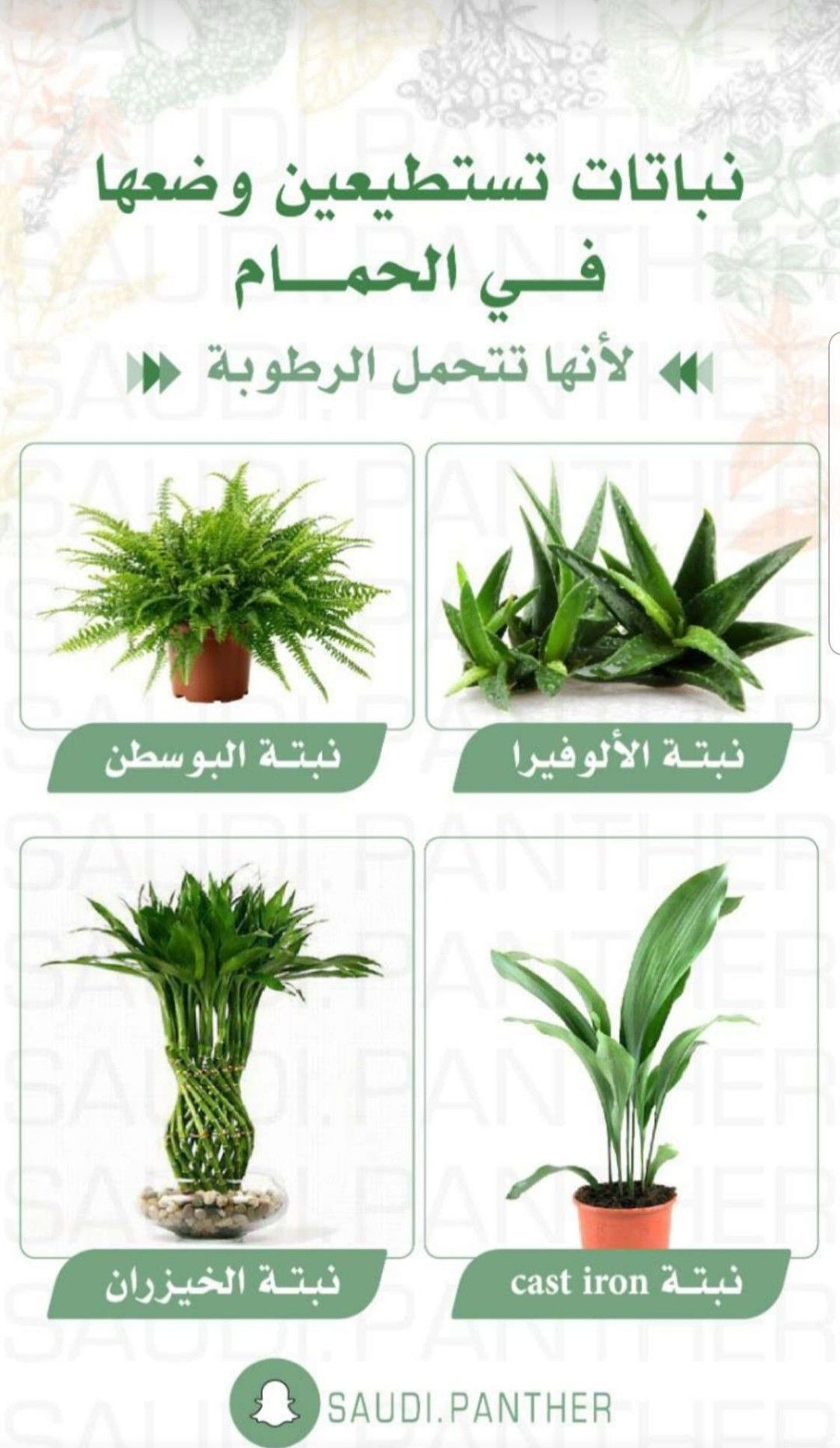 Pin By Hnoreen On Home Managment إدارة المنزل House Plants Decor Vegetable Garden Diy Plant Decor