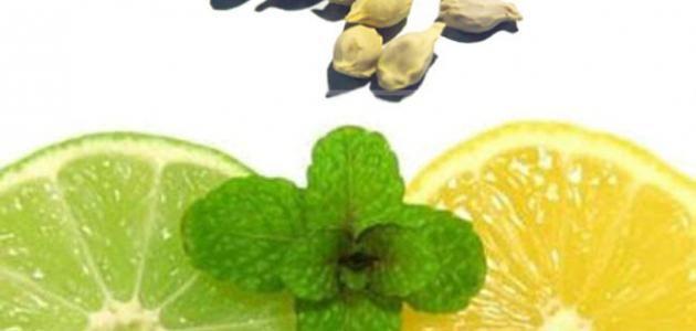 كيفية زراعة بذور الليمون Fruit Plants Tree Seeds Lemon Seeds