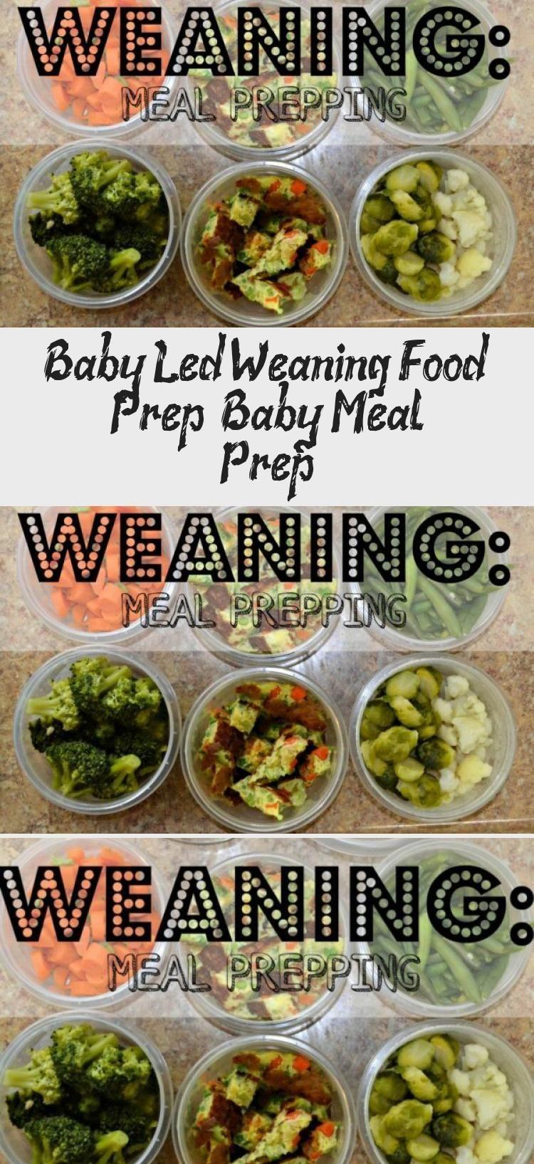 Baby Led Weaning Rezepte