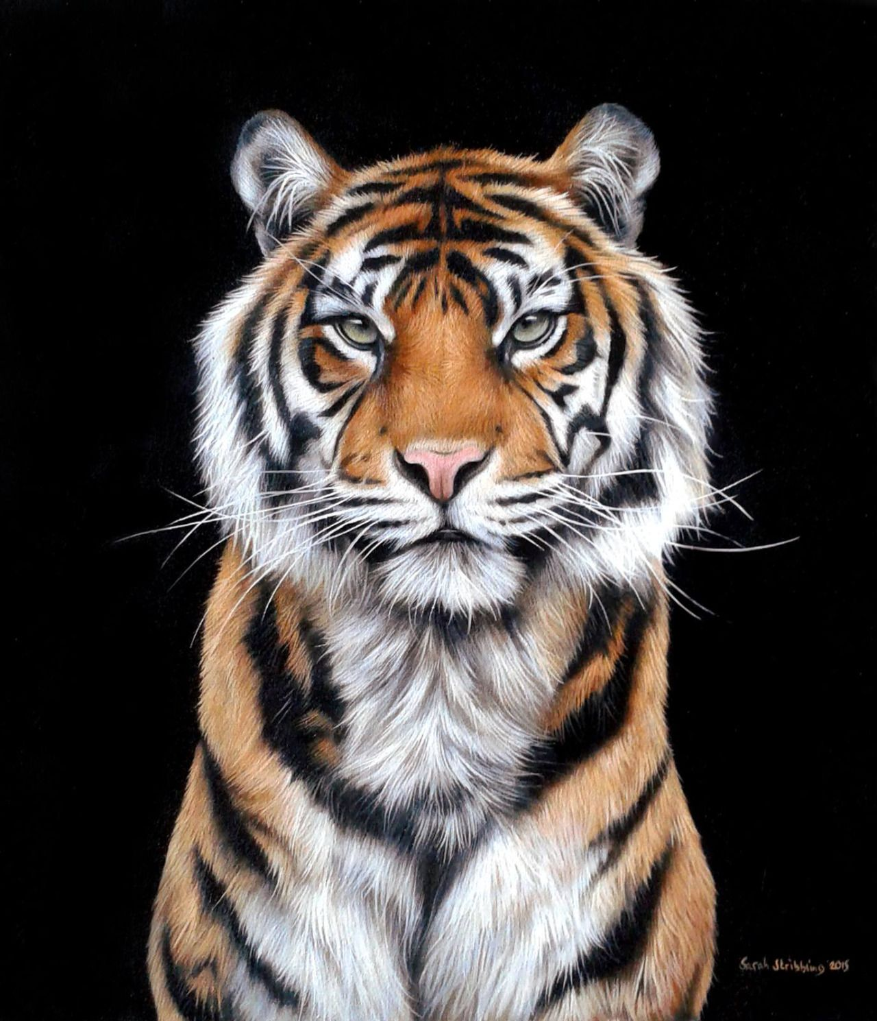 Brookshawphotography Tiger Painting Tiger Artwork Tiger Art