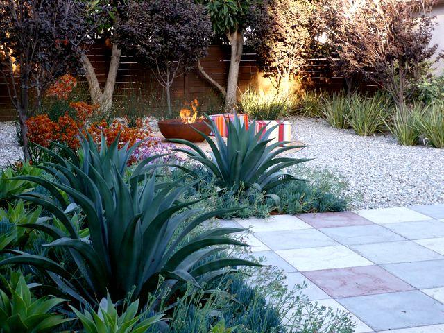 Plump Eric Brandon Gomez Garden Design Build Succulent Landscaping Succulent Landscape Design Landscaping Inspiration