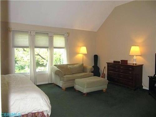 Bedroom Dark Green Carpet Room Ideas