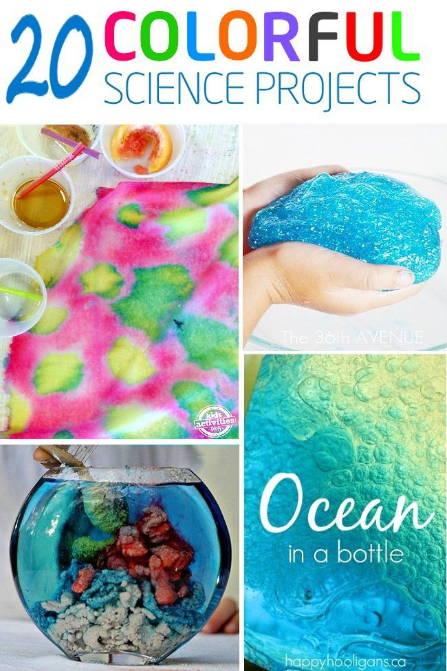 Cool science projects for 4th graders 1000 images about for Cool fun projects