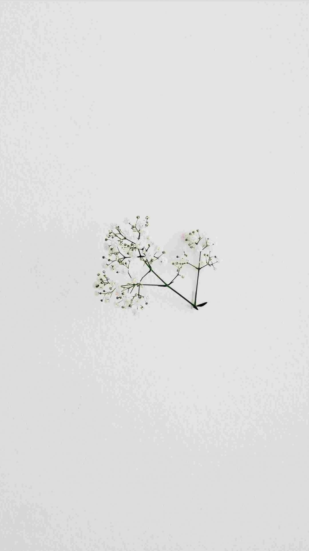 Aesthetic Minimalist White Wallpaper Iphone | Iphone ...