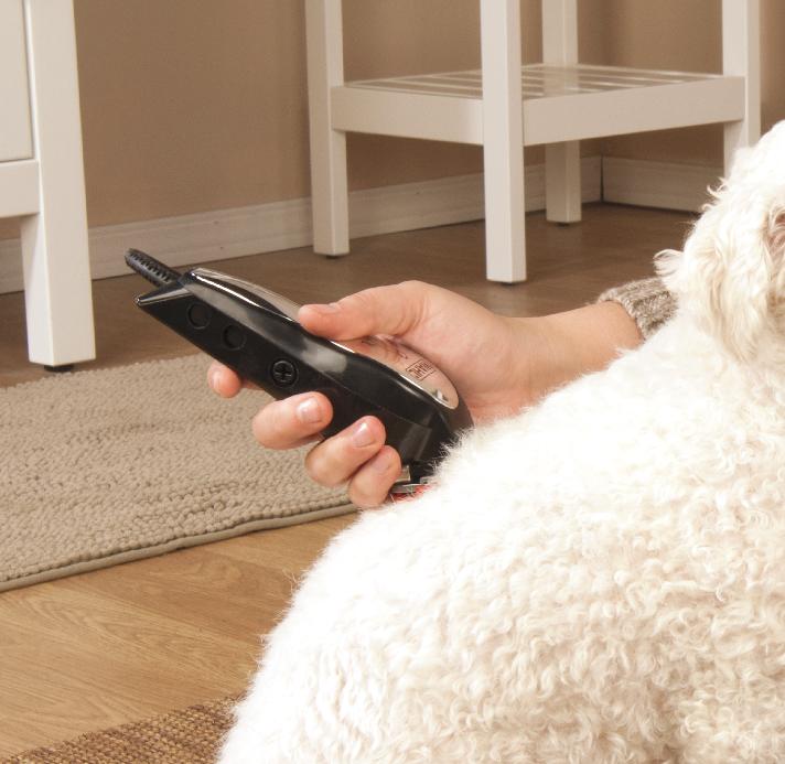 Pets Dog Grooming Scissors Dog Grooming Supplies Pet Grooming