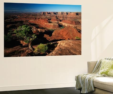 Giant Art Print: View of Gooseneck and Dead Horse Point, Dead Horse Point State Park, Utah, USA by Adam Jones : 72x48in #utahusa