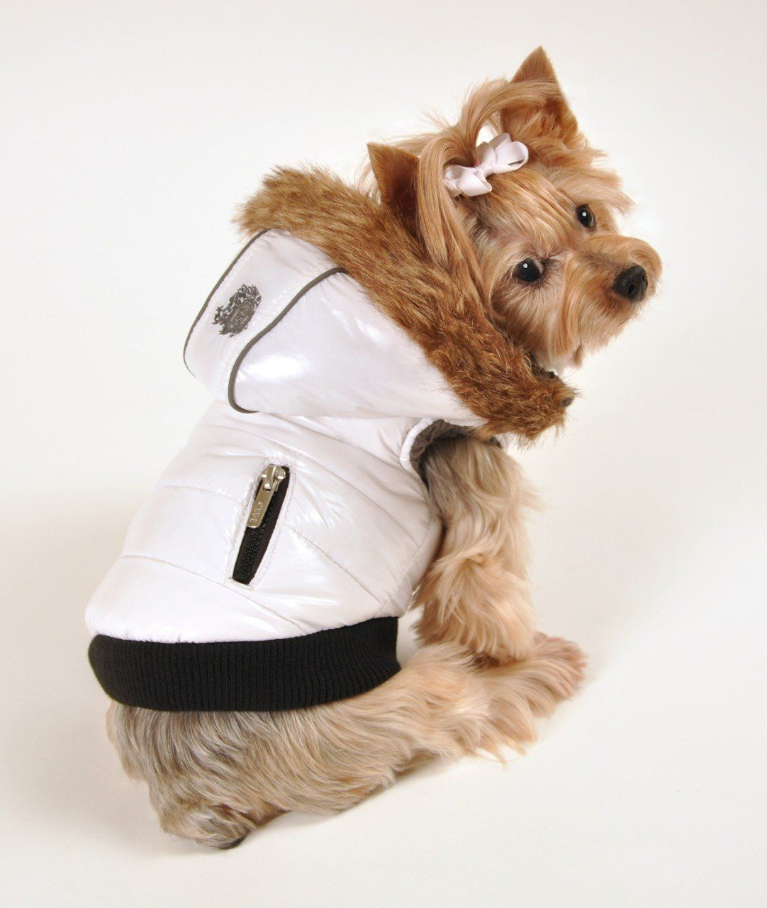 "Hip Doggie ""Elite"" Reflective Coat Dog coats, Designer"