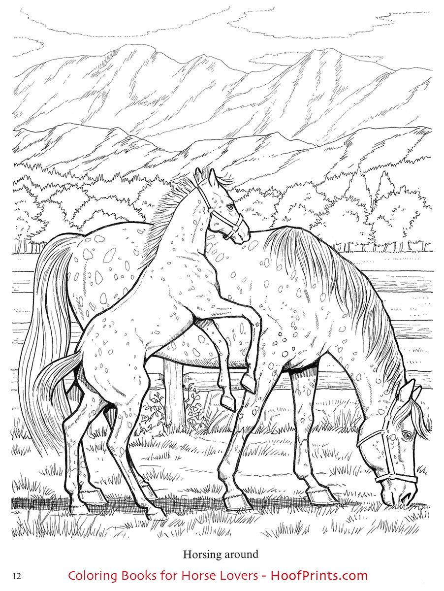 Wonderful World Of Horses Coloring Book Www Hoofprints Com Horse Coloring Books Horse Coloring Pages Horse Coloring