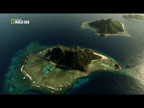 Nat Geo Wild Islands - Fiji HD Nature History Documentary - YouTube