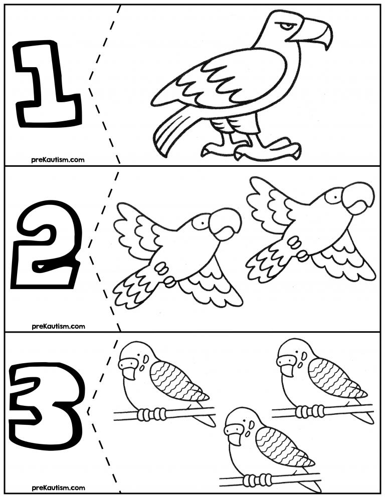 FREE Birds Coloring Quantity Puzzles #'s 1-6