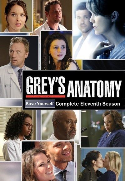 Greys Anatomy Staffel 11 Kaufen