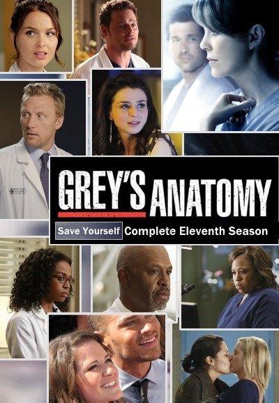 Greys Anatomy Season 11 Poster Anatomia De Grey Greys Anatomy Temporada 11 Jackson Y April