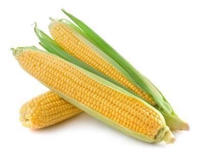 Can Diabetics Eat Corn?