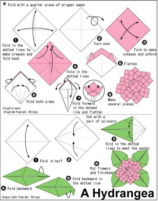origami flower instruction diagram 93 ford ranger starter wiring hydrangea pinterest flowers