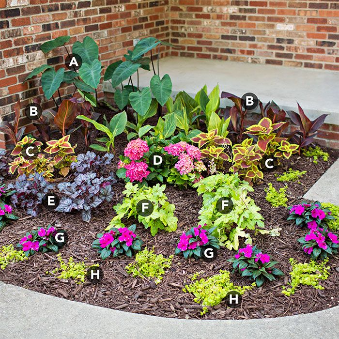 Verhead View Of Small Shade Garden By Front Entryway Sloped