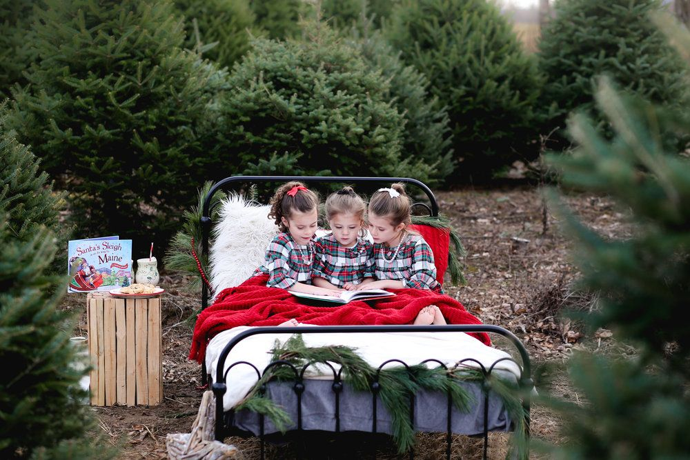 Christmas Mini Sessions At The Tree Farm Black Iron Bed