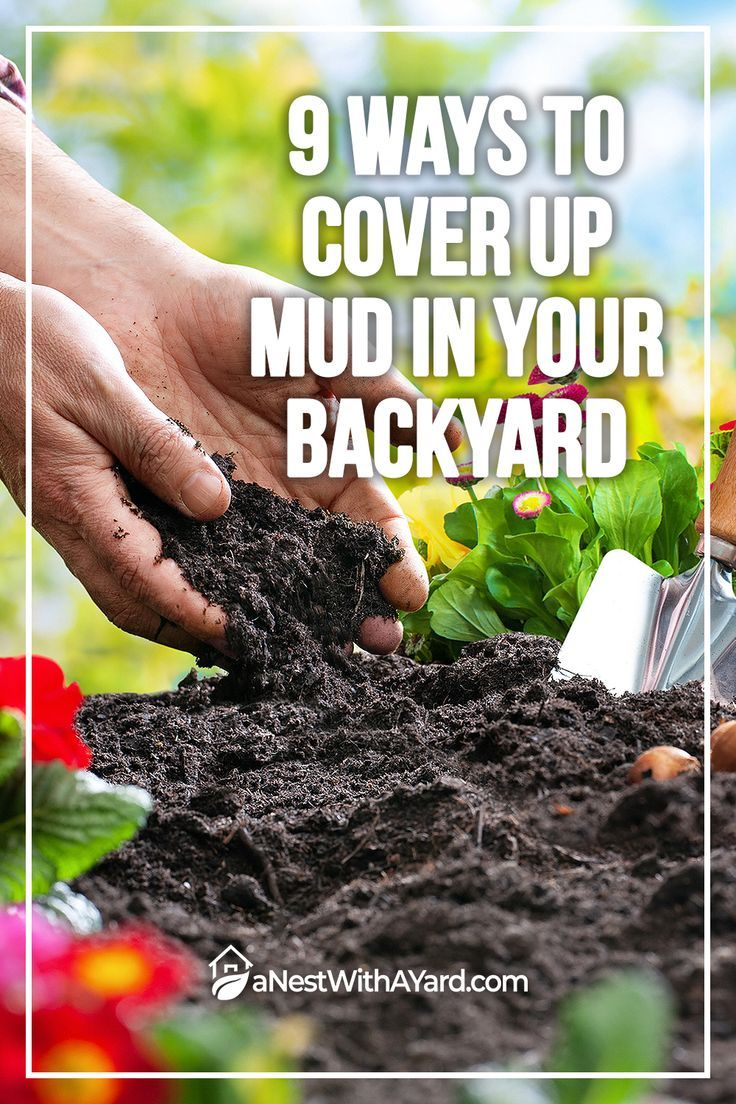 9 Ways To Cover Up Mud In Your Backyard in 2020 | Backyard ...