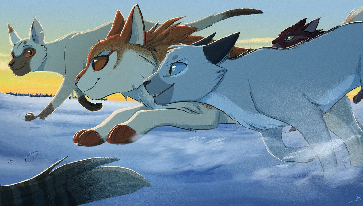Far from home by OwlCoat Warrior cat drawings, Warrior