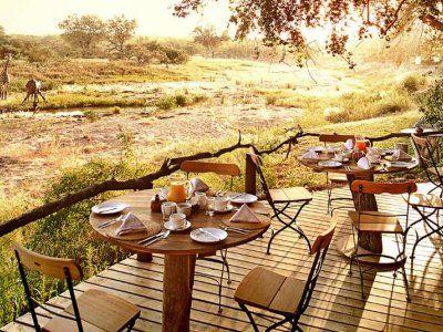 Limpopo provincie & Mashatu Private Game Reserve | Footprints