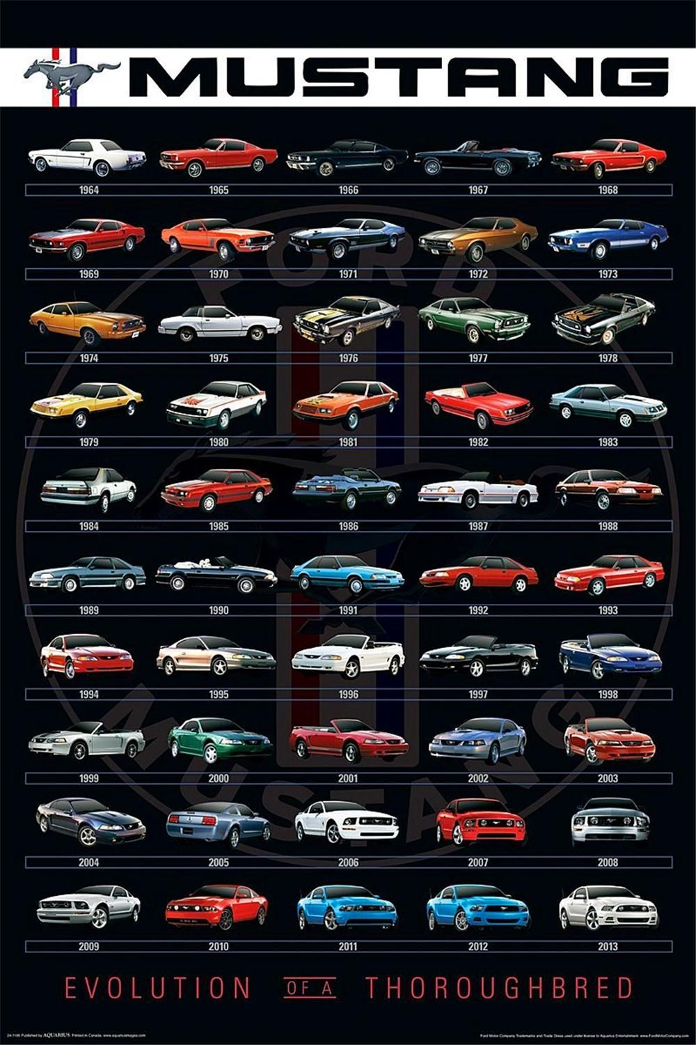 mustangs through the years pesquisa google carros mustang cars ford mustang gt e cars. Black Bedroom Furniture Sets. Home Design Ideas