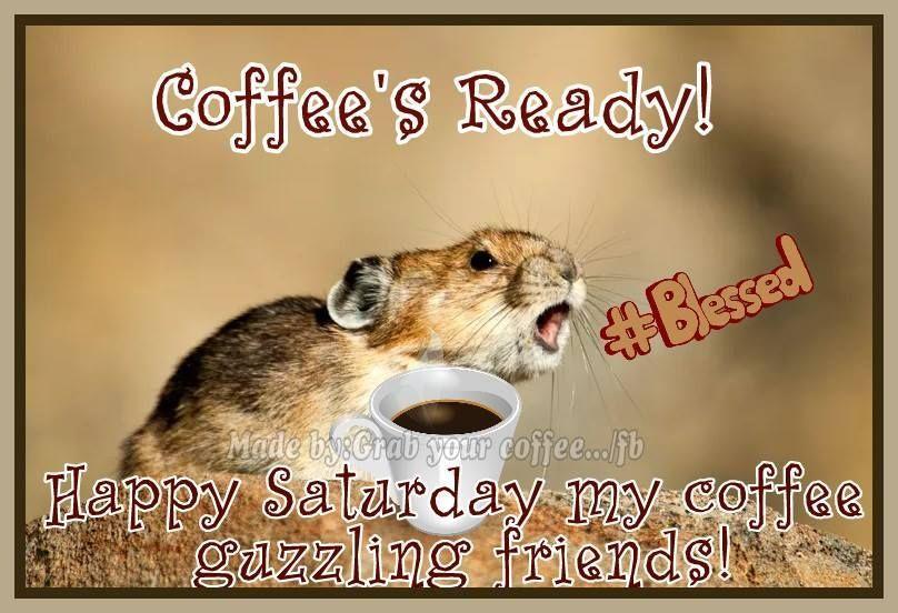Online Brochure By Avon Funny Saturday Memes Saturday Memes Saturday Humor