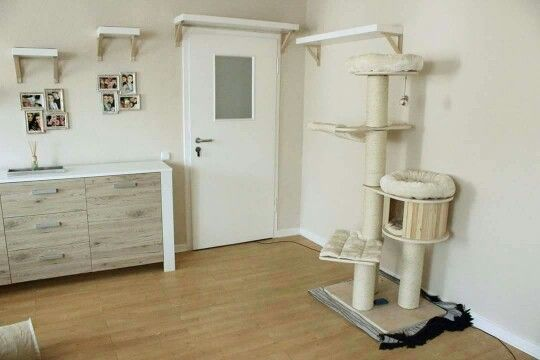 die besten 25 catwalk kratzbaum ideen auf pinterest kitty wohnung katzenb ume und kratzbaum. Black Bedroom Furniture Sets. Home Design Ideas