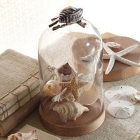 Cloche With Shell Knob
