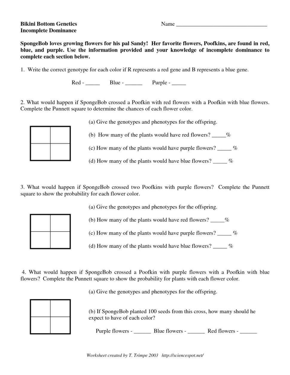Dominance And Codominance Worksheet Answer Key