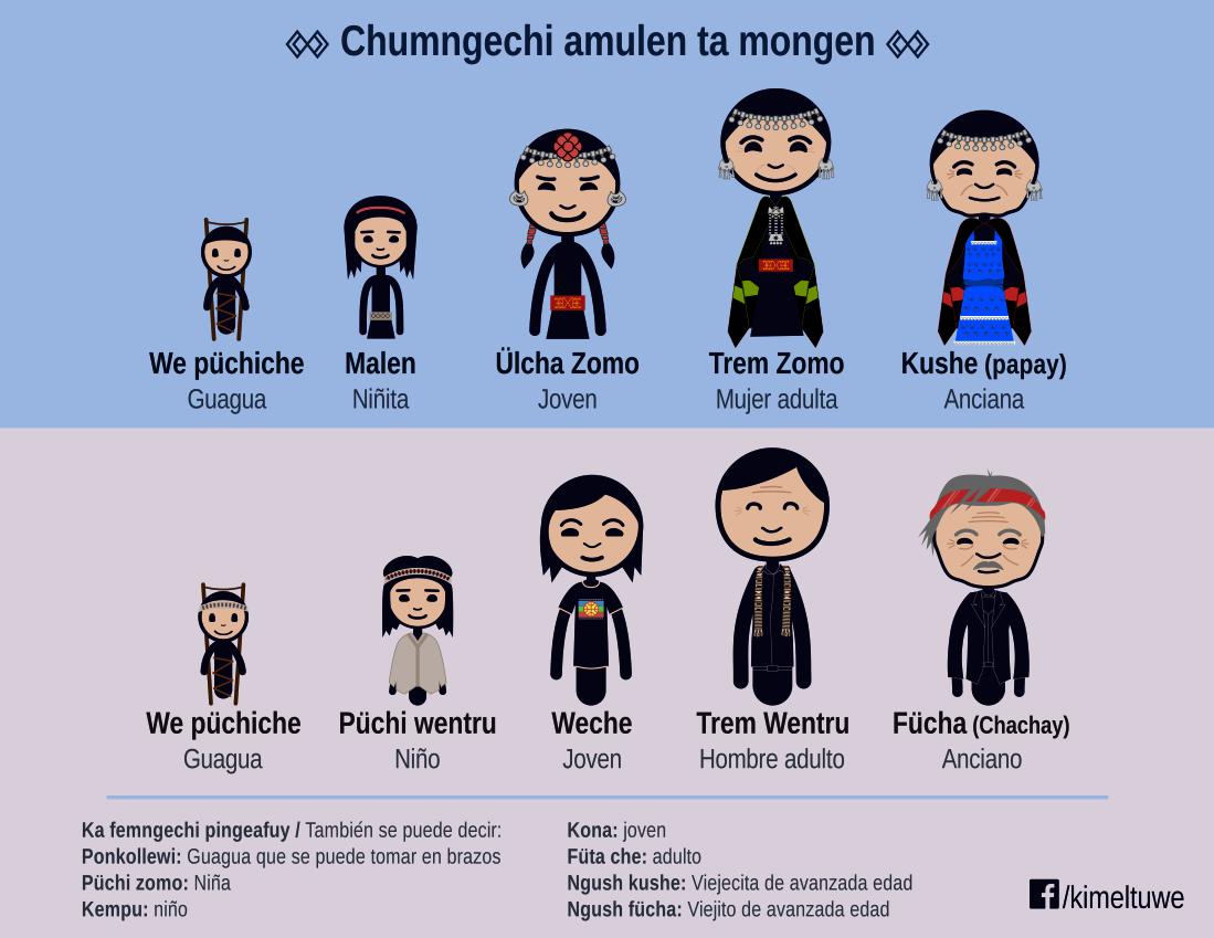 Materiales para la enseñanza y aprendizaje de Mapudungun, Kimeltuwe.