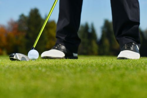 Happy Friday! Join us tomorrow at the 3rd Annual IMHA golf tournament! We can't wait to see you there!