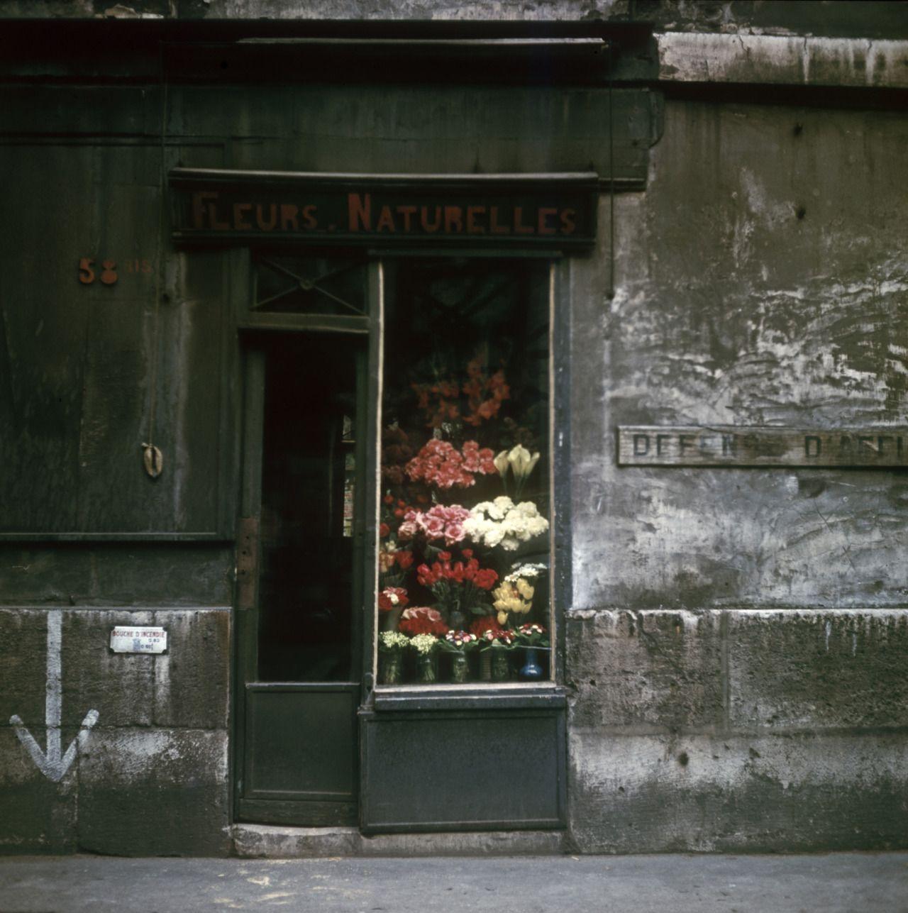 Flower Shop, Paris, 1950s by Victor Meeussen