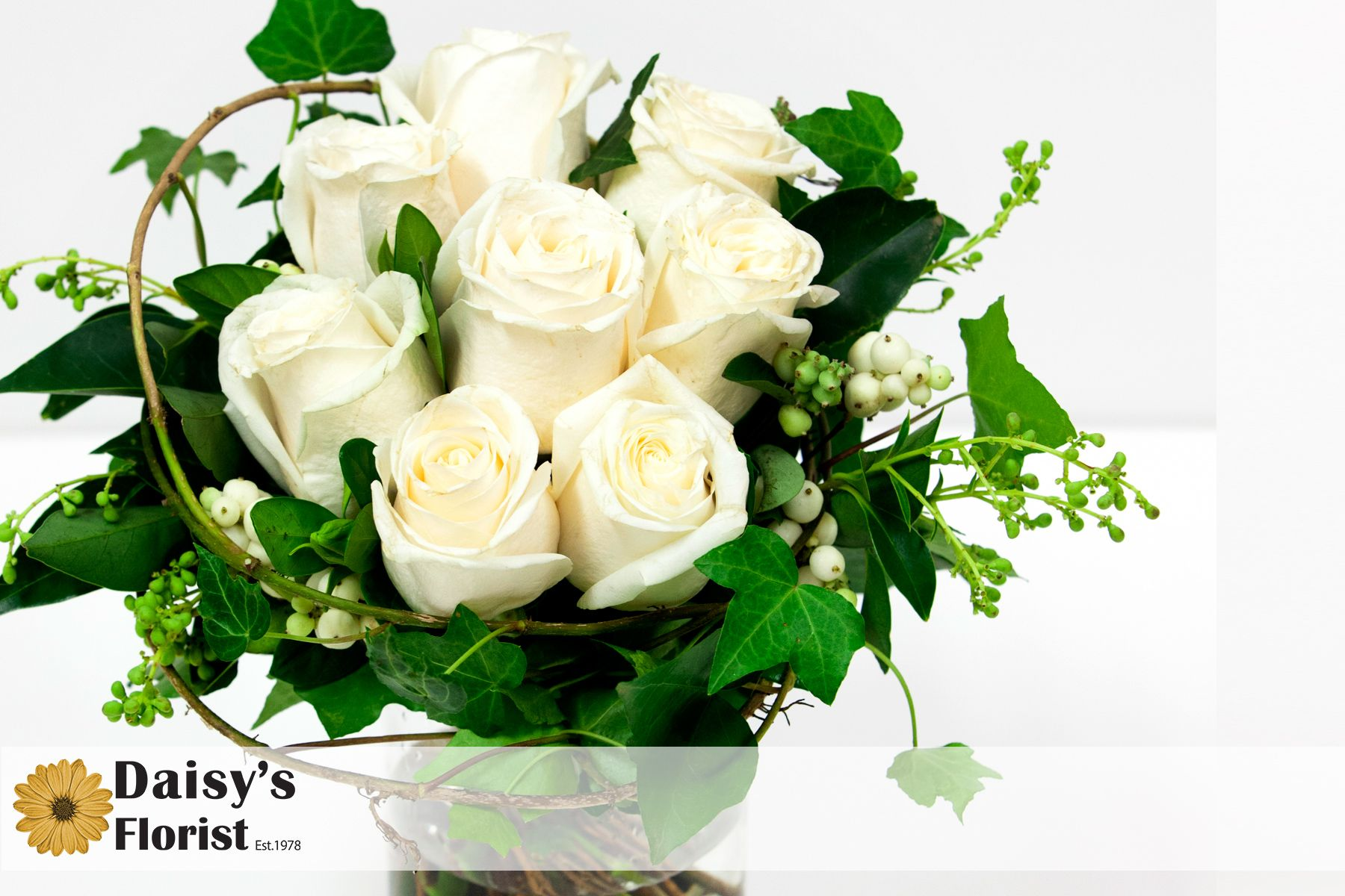 The classic romance of white roses and green ivy