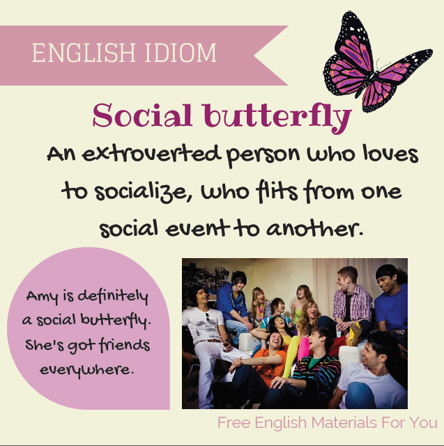 Idiom Social Butterfly English Phrases Idioms Grammar And Vocabulary