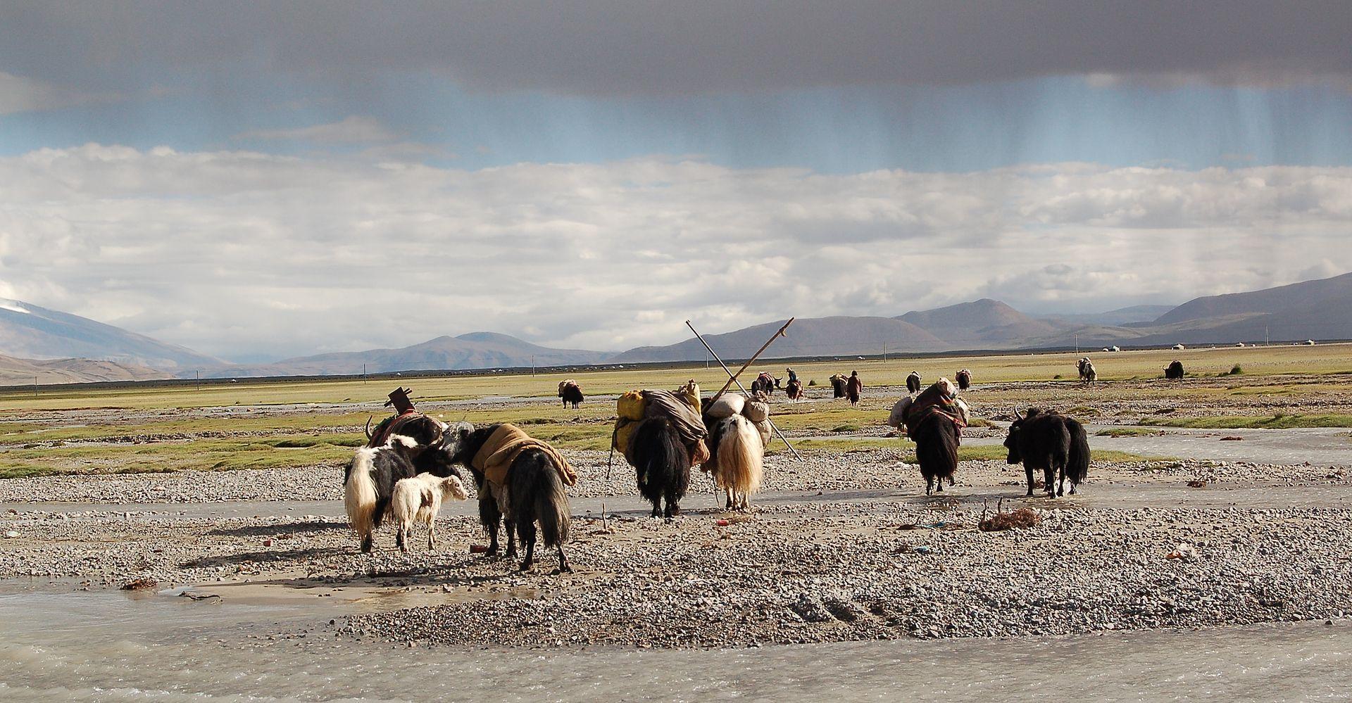 MNga´ ris (Tibet) Nomaden Dieter Schuh Nomadismus
