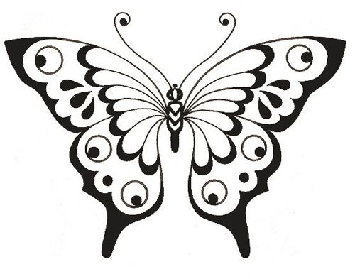 Babochki Shablony Trafarety Babochki Butterfly Butterfly