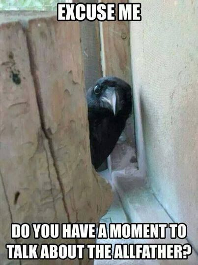 Image result for funny raven at window  saying do you have a moment to talk about the allfather